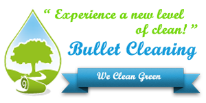 bulletcleaning